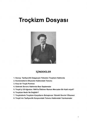 thumbnail of trocki-dosyasi