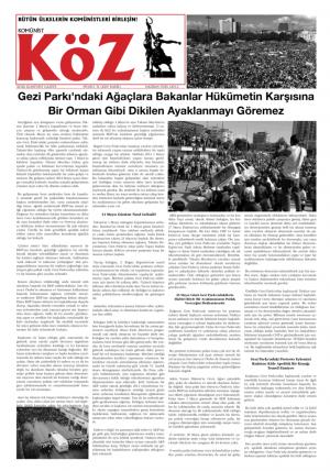 thumbnail of taksim-ozelsayi-haziran2013